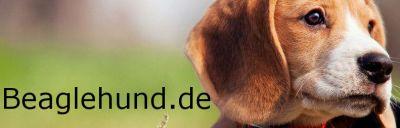 beaglehund.de