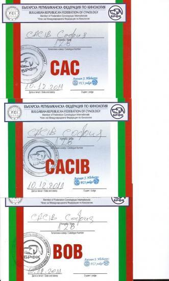 cac-cacaib-bob-bog-10-dec-2011-2.jpg