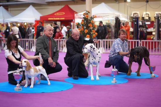 expo-valence-2012-331.jpg