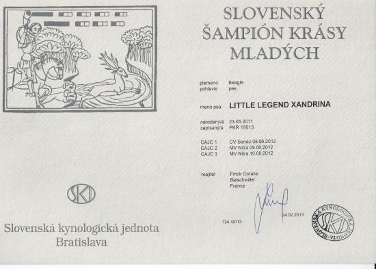 titre-champion-jeune-slovaquie-little.jpg
