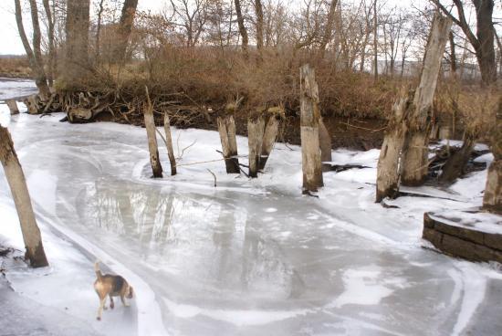 ballade en hiver
