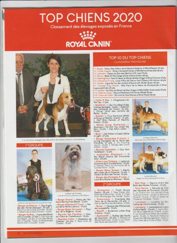 Magazin vos chien oct 2020